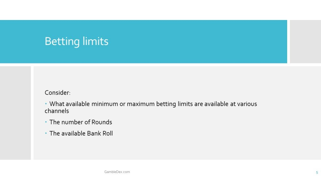 Martingale Betting System Info-Slides 5