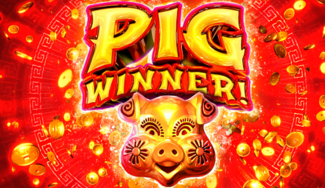 Pig Winner 2